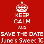 Evaluatie en save the date! Trainerscongres 16 juni 2017